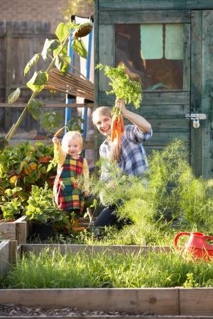 Woman and her child harvesting carrots from her potager garden