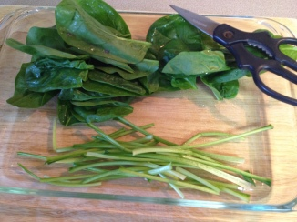 cut stems from spinach leaf