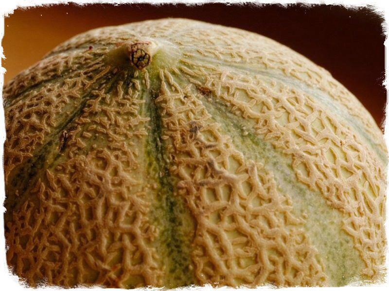 How To Choose A Ripe Cantaloupe Splendid Recipes And More The cantaloupe is one of the melons that most people have trouble telling when it is. how to choose a ripe cantaloupe