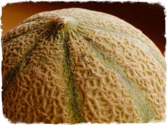How to Choose a Ripe Cantaloupe
