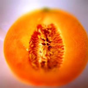 once a cantaloupe is picked from the vine it will not get any riper