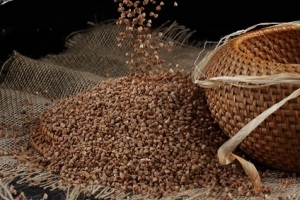 Flax seed an alternative to wheat flour