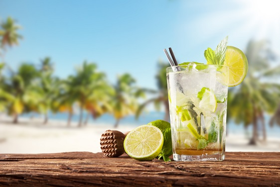 Cooling Down with a Mojito Beverage