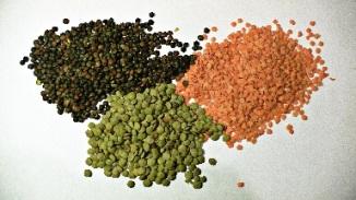 varieties of lentils