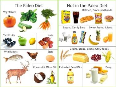 the paleo diet verse a non paleo diet