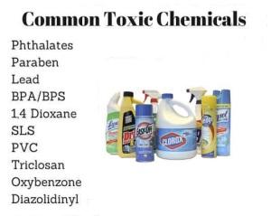 Common Toxic Chemicals