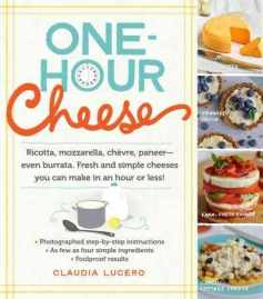 One Hour Cheese by Claudia Lucero