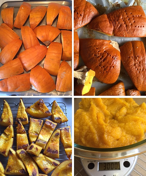 collage of Roasted Pumpkin