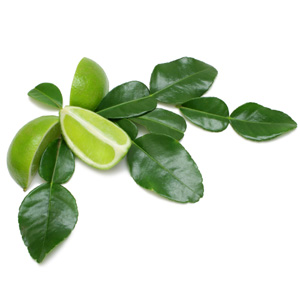 thai lime leaves