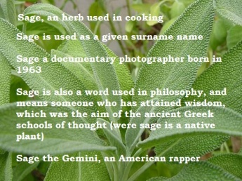 image of a sage plant with words in the fore ground