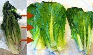 wilted vegetables restored